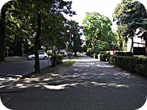 zielona-gora-1